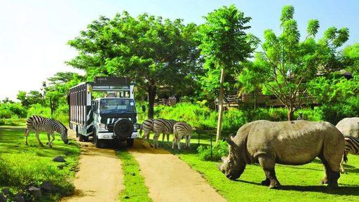 Du lịch Phú Quốc -Vinpearl Safari